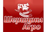 logo-shershuny